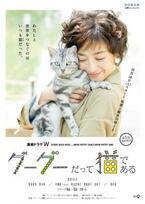 UA、宮沢りえ主演・連続ドラマ「グーグーだって猫である」に楽曲提供