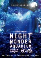 """月に照らされる""""夜の水族館""""…新江ノ島水族館で「ナイトワンダーアクアリウム」開催"""