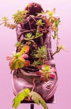 ミシェル・ブラジー日本初の個展が「銀座メゾンエルメス フォーラム」で開催