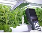 富士通、食・農クラウド「Akisai」にRFID読取機能搭載の生育管理