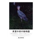 東京都・上野動物園が「真夏の夜の動物園」を開催
