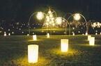 奈良県・奈良公園を灯篭が埋め尽くす「なら燈花祭」開催