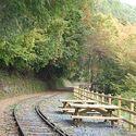 大井川鐡道、貨物線跡を歩く「井川湖畔廃線ウォークと井川線トロッコ列車」
