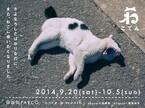福岡県・福岡パルコで大量の猫アイテムが集まる「ねこてん」が開催中!!