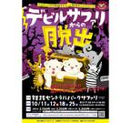 兵庫県姫路市でホワイトライオンの赤ちゃんが見られる謎解きゲーム開催