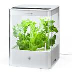 サンワ、部屋で野菜を育てられる土いらずの水耕栽培器