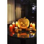 「大人だけのハロウィンパーティー」も! ホテル椿山荘東京で秋の限定プラン