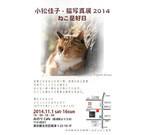 東京都文京区で、家族と暮らす「家猫」が中心の写真展開催