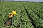 NEC、ルーマニアのじゃがいも農場で農業ICTの実証実験