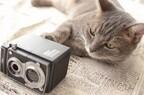 一眼レフ初心者が猫撮影に挑む! (16) カメラの形をした可愛いカメラ雑貨