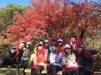 歴史を風景と味で堪能するランニング企画「京都ジョイラン2014秋」が開催