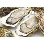 牡蠣・蟹がおいしい都道府県ランキング - 海鮮王国・北海道を破ったのは…