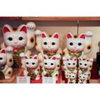 猫好きも知らない東京隠れ猫スポット