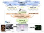 NTT、近未来予測で人や交通の流れの最適化する研究開発「himico」開始