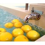 1日限定! 都内の銭湯にグレープフルーツがプカプカ浮かぶ湯が登場