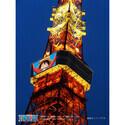 史上初! 東京タワーに巨大映像 - 『ONE PIECE』