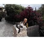 岩合光昭が審査する「ネコ写真コンテスト」開催中