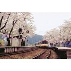 春旅行の人気急上昇エリア - 1番人気は石川県! 2位は北陸じゃなくて…