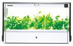 水だけで野菜を育てる「水耕栽培」をレンタルで楽しめるサービスが登場