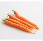 鉛筆サイズのニンジン!? オイシックスが「春夏オモシロ珍野菜」を発売