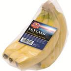 標高800メートルで栽培されたバナナ「スウィーティオ スカイランド」発売