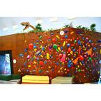 アマゾンのオフィスはまるでジャングル! - 遊び心溢れる職場で既成概念を覆す