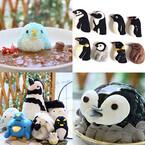 東京都・南青山と吉祥寺の「ことりカフェ」で「ペンギン祭」が開催