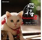 「猫侍」ドラマ主題歌がCD化! 映画のパンフレットに限定封入