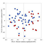 多発性硬化症、発症に特定の腸内細菌の減少が関与か - NCNP