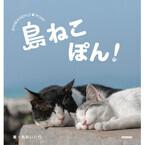 島に暮らす猫を集めた写真集『島ねこぽん』発売 - 東京都で先行販売も