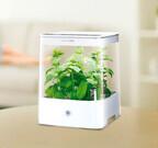 室内で本格水耕栽培! 水やり不要で野菜が収穫できる「Green Farm」に新機種