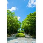東京都にある霊園探訪! ハチ公に寄り添われた上野博士にアートな岡本太郎も