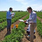 NEC、シミュレーションで営農最適化など支援の農業ICTソリューションを開発