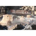 伊豆シャボテン公園で「カピバラの露天風呂」今年も開催! 家族で仲良く入浴