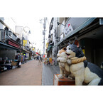 千円で大満足! 東京都のレトロ商店街「谷中ぎんざ」は猫と食べ歩きの宝庫