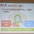 糖尿病の予防効果が期待できる天然アミノ酸・ALA