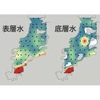 神戸大など、環境DNA解析法によって海洋中の魚群の分布や規模を明らかに