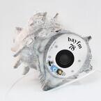 サザエの貝殻を丸ごと使ったラジオ「SAZAE RADIO」 - bayFMが開発