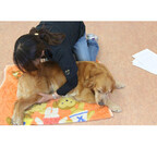 日本初 老犬の介護ホーム誕生