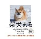 柴犬と日本の古きよき景色を楽しめる写真集