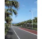 東京都・八丈島に自転車を持っていくと楽しくなるワケ - 東京から自転車旅