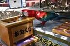 静岡県・伊豆で「インコの日」イベント -