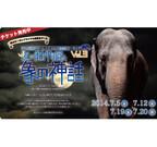神奈川県横浜市のズーラシアで謎解きイベント - 閉園後の動物園が舞台