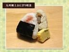 JAL、東京 - 北九州線の早朝便で九州の郷土料理朝食を無料提供
