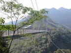 観光で行きたい全国の穴場スポット (4) 国内最大級の照葉樹林をダイレクトに感じられる歩くつり橋「照葉大吊橋」