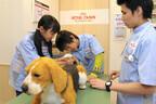 「キッザニア東京」の「動物病院」パビリオンでリアルな獣医師体験を