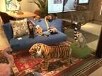 マイルームでフラミンゴやライオンと暮らそう! 「wonder zoo」開催中