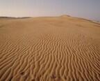幻想的な砂の景色と地元ならではのグルメを堪能! 鳥取砂丘攻略ガイド