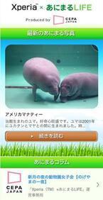 カワイイ動物写真やコラムが満載! スマホサイト「Xperia×あにまるLIFE」
