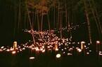 竹林の里の面影を残す大阪府吹田市で、「千里の竹あかり」を10月6日開催